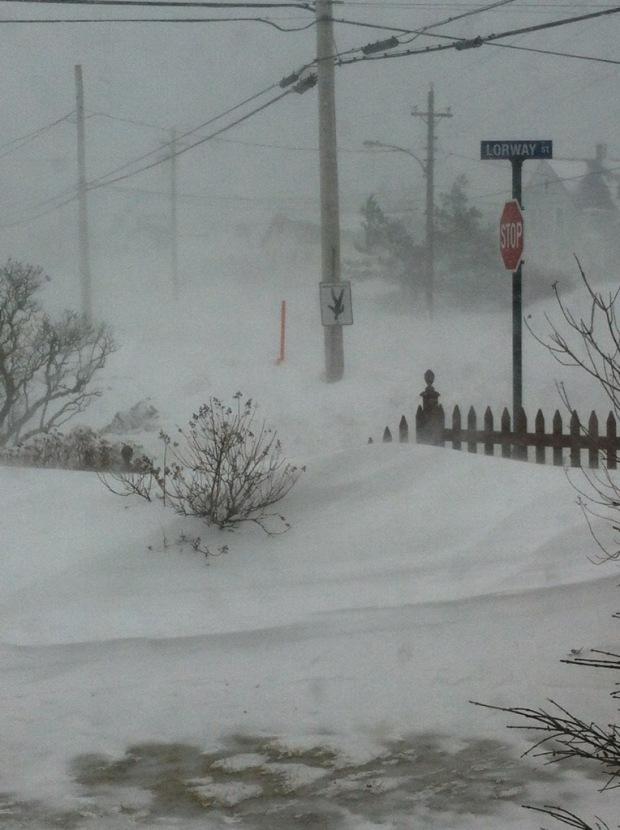 Blizzard snow storm in the Atlantic Canada